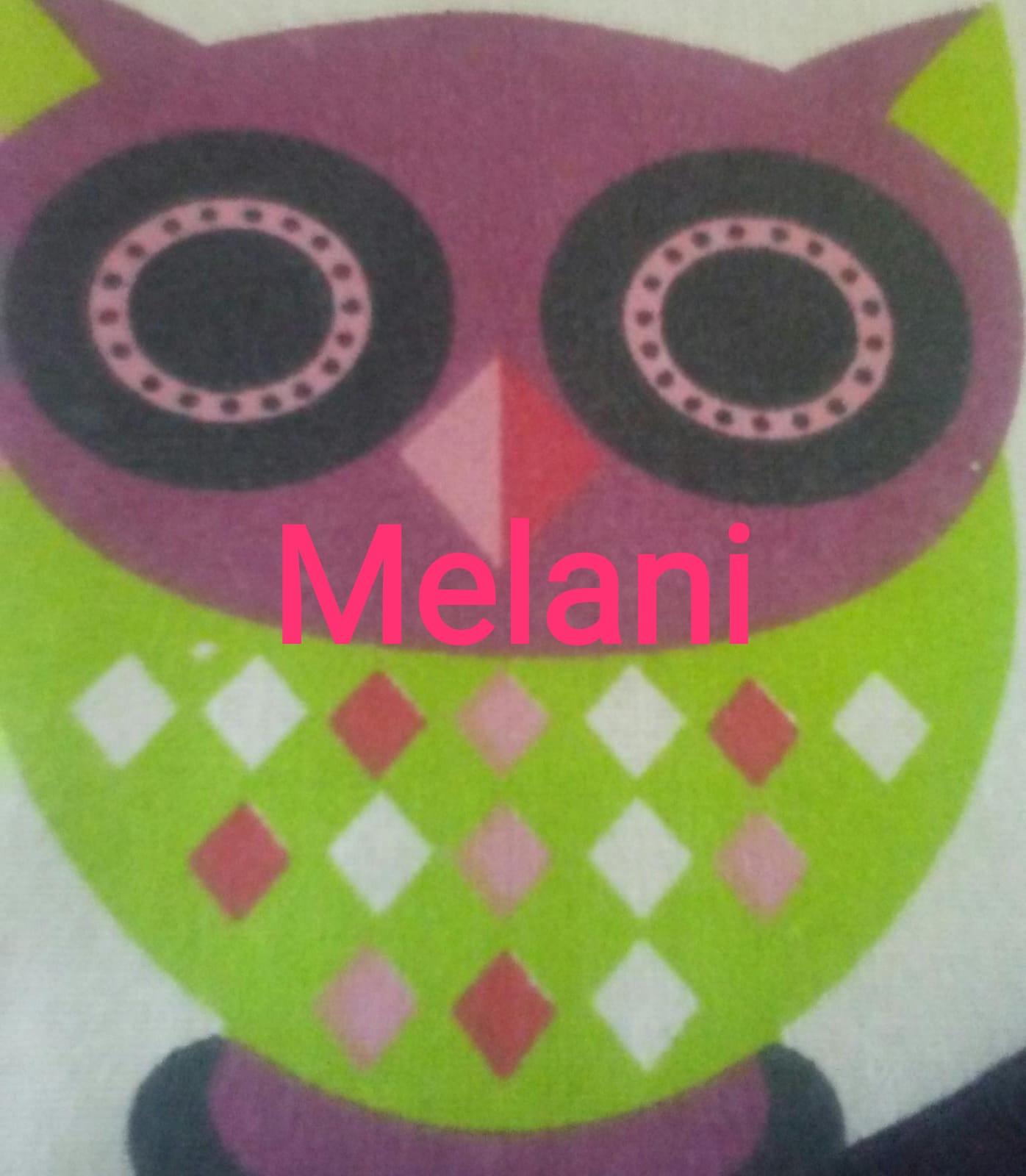 4.-CIRCULÍN EN LA PIRÁMIDE. Melanie R. S.